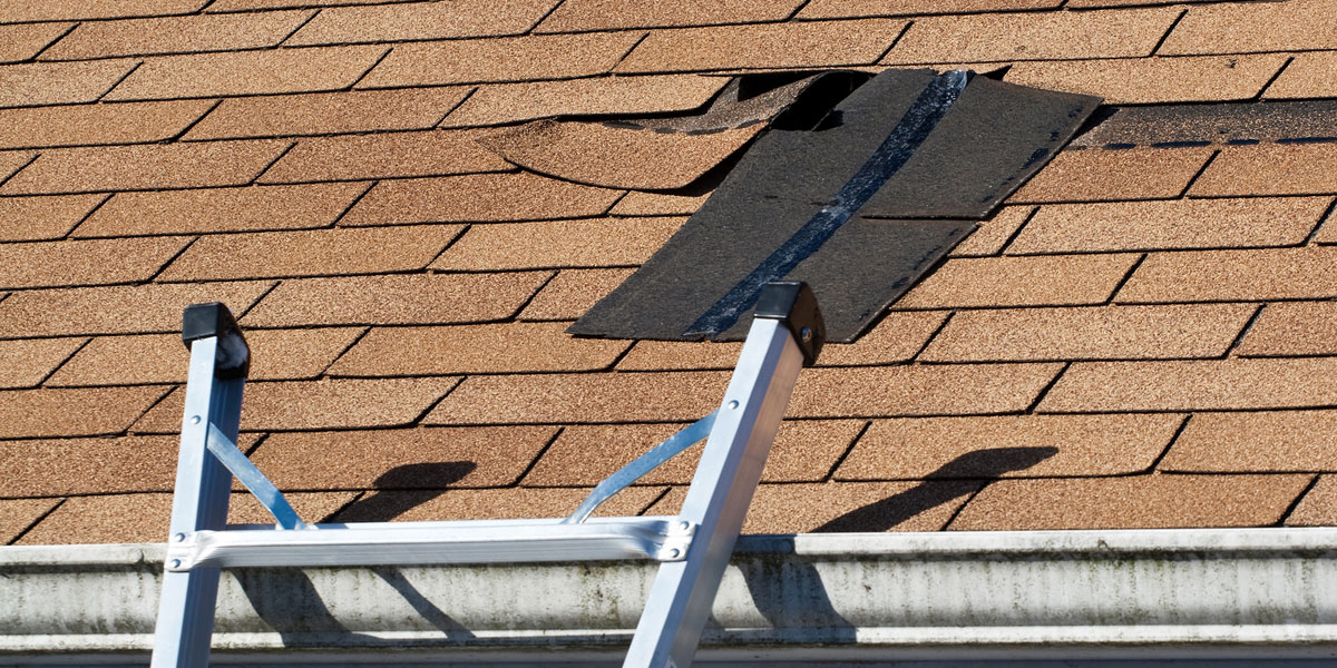 Quality Repairs From A Local Roofing Company